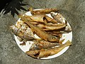 3412Fried fish in the Philippines 31.jpg