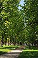 71-212-5019 Budysche park DSC 4971.jpg