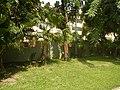 71Mehan Garden Ermita Manila Universidad de Manila 04.jpg