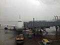747 HKG Typhoon Utor.JPG