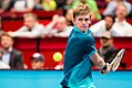ATP Erste-Bank-Open 500 Vienna 2017-3.jpg