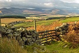 A gate above Ardlair - geograph.org.uk - 1047342.jpg