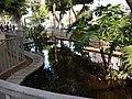 A pond at Rothschild Boulevard.jpg