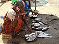 A scene of weighing fish.JPG