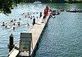 Aareschwimmen 2008 08 10start.jpg
