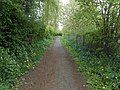 Abbott's Lane, Penyffordd (2).JPG