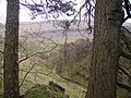 Above Trow Gill - geograph.org.uk - 766302.jpg