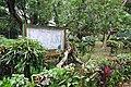 Acharya Jagadish Chandra Bose Indian Botanic Garden - Howrah 2011-02-20 1613.JPG