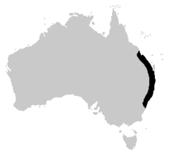 Adelotus brevis distribution map.png