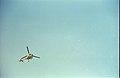 Aerospatiale VT-EHI Helicopter - 70mm Horizontal Film Shooting On Calcutta - Science City - Calcutta 1996-10-30 785.JPG