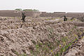Afghan National Security Forces clear a grape orchard while on patrol in the Panjwai district, Kandahar province, Afghanistan, April 1, 2012 120401-A-VQ566-441.jpg