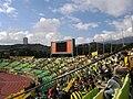 Aficionados del Deportivo Táchira.jpg