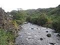 Afon Glaslyn looking upstream - geograph.org.uk - 2107800.jpg