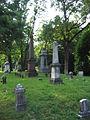 Albany Rural Cemetery 02.jpg