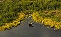 Alce (Alces alces), parque estatal Chugach, Alaska, Estados Unidos, 2017-08-22, DD 72.jpg