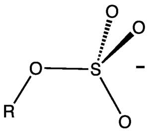 Organosulfate - Structure of an alkylsulfate (not show is the cation such as sodium or ammonium).