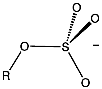 Organosulfate - Structure of an alkylsulfate (not shown is the cation such as sodium or ammonium).