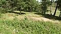 Allanaquoich Farm (Mar Lodge Estate) (16JUL17) (19).jpg
