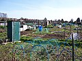 Allotment Gardens-Warsash - geograph.org.uk - 746955.jpg