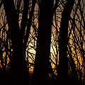 Almost sunset - panoramio (1).jpg