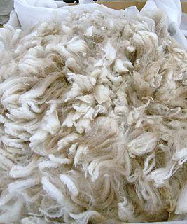 Alpaca fiber natural fiber from the hair of the alpaca