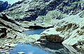 Alpes-Maritimes Saint-Martin-Vesubie Lacs Bessons - panoramio (4).jpg