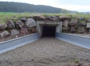 Amphibientunnel bei Furtwangen