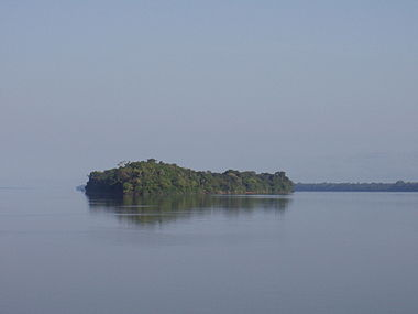 Anavilhanas Amazon River.JPG