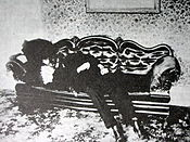 The murdered body of Andrew Borden, Lizzie Borden's father.