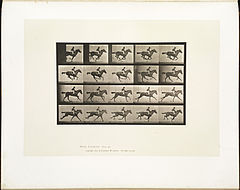 Animal locomotion. Plate 627 (Boston Public Library).jpg