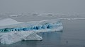 Antarctica (47238688382).jpg