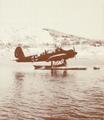 Aradi 196 at Sørneset.png