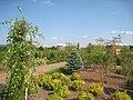 Arboretum at Penn State - 057.jpg