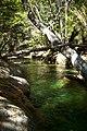 Argentina - Bariloche trekking 153 - cool swimming spot (6798065501).jpg