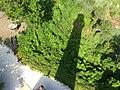 Assateague Lighthouse shadow (14662943143).jpg