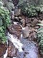 Attractive Waterfall at Sinharaja Rain Forest.jpg