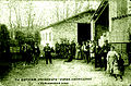 Aude Ch. Authier pépiniéres vignes américaines Carcassonne.jpg