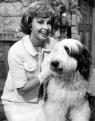 """Please Don't Eat the Daisies (TV series) - Guest star Audrey Meadows in """"The Big Brass Blonde"""" episode, 1965"""