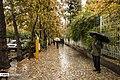 Autumn in Eram Garden 2019-12-09 12.jpg