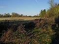Autumnal scene - geograph.org.uk - 1039287.jpg