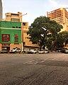 Avenida Francisco Solano Lopez Caracas Venezuela arquitectura y vegetacion.jpg
