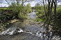 Bèze river and Alban in Drambon 6.JPG