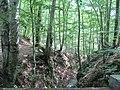 Băile Olăneşti - panoramio (6).jpg