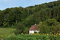 B-Arlesheim-Raenggersmatt.jpg