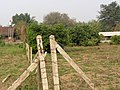 BAN RUNG DAENG - panoramio - CHAMRAT CHAROENKHET.jpg