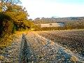 BATTLESTEAD HILL, TATENHILL. - panoramio.jpg