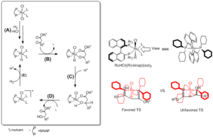Noyori asymmetric hydrogenation - BINAP-Ru catalytic pathway and selectivity