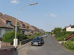 Papengey in Braunschweig