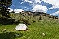Backcountry views from along Hellroaring Creek (40632955170).jpg