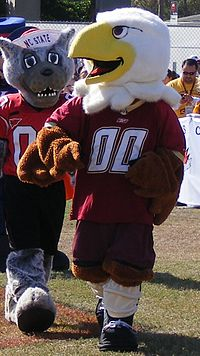 Baldwin the Eagle.jpg